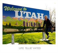 LIFE 'ELLIE' VATED (Robert Howell _) Tags: utah billboards lifeelevated rah2269