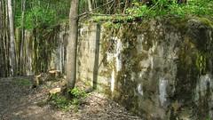 2012-050421 (bubbahop) Tags: ruins thirdreich nazis wwii poland worldwarii wolfs hitlers worldwar2 2012 lair hqs bunkers okh ketrzyn wolfsschanze mamerki kętrzyn mauerwald europetrip25