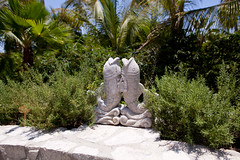 At the Herb Garden (thewanderingeater) Tags: mexico hotel resort loscabos presstrip loscabosmexico oneonlypamilla 5starluxuryhotel pamillaloscabosmexico 5starluxuryresort