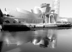 Reflejos.Museo Guggenheim. Bilbao (lameato feliz) Tags: bilbo bilbao bizkaia guggenheimbilbao reflejo