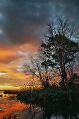 Warmth and Water (Tim Pohlhaus) Tags: prime hook national wildlife refuge salt marsh sunrise atlantic flyway wetland delaware bay