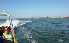 cruising off shore (judecat (relaxing by the sea)) Tags: ocean beach sea thundercatdolphinwatch wildwood newjersey