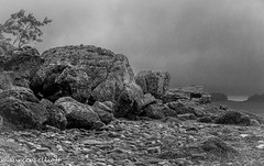 Rocky (maureen.elliott) Tags: rocks rocky shoreline stlawrenceriver quebec bicnationalpark hiking outdoors skies nature blackandwhite