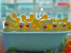Full of quacks (BLACK EYED SUZY) Tags: rubberducks tub tadaa afterlight colors ducks bath