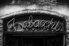 Tabacchi (m.a.r.c.i) Tags: fujifilm xe1 fujinon xf1855mmf284 toskana toscana elba isoladelba landschaft landscape italien italy italia nature marci capoliveri monochrom schwarzweis blackwhite bw noiretblanc tabacchi