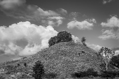Tor (gecko47) Tags: tor hill landform feature landscape bw monochrome charterstowers northqueensland goldmining historical pioneering heritage goldrush theworld geology