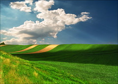 Shadow on the slope o 02 (Katarina 2353) Tags: landscape spring katarina2353 katarinastefanovic serbia vojvodina europe