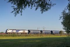30082016-7388 - Europorte - E4036 @Barisey-au-Plain (rino54) Tags: euro4000 france cheminsdefer europorte stadler vossloh crales grain lorraine ligne15 train sony a7ii
