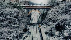 JACA 5 (israel de la rosa) Tags: jaca huesca invierno winter viajes travel paisaje landscape snow nieve train trenes