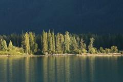 IMG_8544 (terrynoske) Tags: canada jasper lake