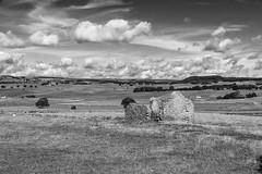 Wardlow Mires (l4ts) Tags: landscape derbyshire peakdistrict whitepeak fieldbarn ruin wardlow wardlowmires drystonewalls farmland blackwhite