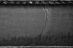 A thunderbolt -  (snakecats) Tags:     nara japan naraprefecture  todaijikaidanin   thunder thunderbolt       monochrome blackandwhite bw  crack cracking  wall naracity