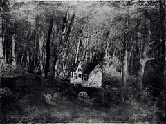 Doll House in the Woods (czolacz) Tags: dollhouse foreboding scary monochrome