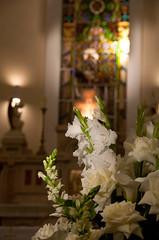 01 (Maria Viriato Decoracoes) Tags: decoração belohorizonte bh casamento clubecampestre decoraçãodecasamento juliocesar novalima photoobjetiva