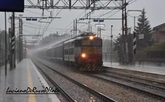 E655 202 Caimano (luciano.deruvo) Tags: e655202 caimanoold old stazione fs rfi trenomerci ferroviedellostato trenitalia e655