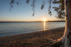 Sunset in Eva Camping - EXPLORED (kritsaloskostas) Tags: evia thessaliastereaellada greece gr sunset kritsalos eva camping sea beach