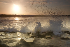 Huge splash at La Jolla Cove (San Diego Shooter) Tags: sunset sandiego lajolla sandiegosunset light