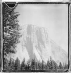In the shadow of El Capitan #2 - Yosemite 2016 (Andrew Bartram (WarboysSnapper)) Tags: usa roadtrip yosemite elcapitan sierranevada california impossiblehq sx70 monochrome polaroid instantphotography snapitseeit believeinfilm emulsivefilm tipshow