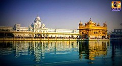 21-09-2016 (Fateh_Channel_) Tags: youth fatehchannel punjab amritsar gurubani goldentemple