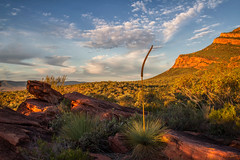 Arkaroo Rock - Flinders Ranges (Jacqui Barker Photography) Tags: mountain arkaroorock australia australianlandscape australianoutback awesomeskies clouds flindersranges landscape range southaustralia