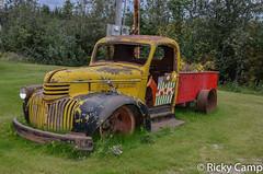 DSC_5444.jpg (ricky-camp) Tags: copperriver alaska