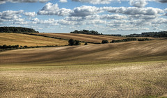 Fields near Winchester, Hampshire (neilalderney123) Tags: 2016neilhoward winchester hampshire farm landscape cloud 2016neilhoward