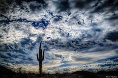 Dramatic Sky (Ken Mickel) Tags: arizona cacti cactus clouds desert estrellla goodyeararizona landscape landscapedesert outdoors plants saguaro topaz topazadjust nature photography silhouette silhouettes sky