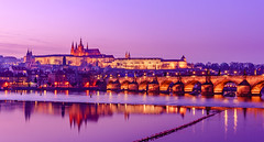 Prague Fairytale (Dmytro Korol) Tags: bluehour bohemia bohemian charles europe landscape outdoors prague unesco vltava ancient architecture bridge buildings capital castle city cityscape dark destinations downtown dramatic dusk east eastern european evening famous fortress gothic heritage holiday houses idyllic journey landmark lights majestic medieval night old palace quay reflection river riverbank riverside romantic royal sky skyline spire steeple sundown sunset tourist tower town townscape travel twilight urban water waterfront