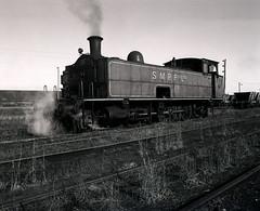 No. 31 derailed at Hexham, April, 1984, Richmond Vale Railway. (UON Library,University of Newcastle, Australia) Tags: railroadsrollingstockhistory railroadsnewsouthwaleshuntervalleyhistory coalminesandminingnewsouthwaleshuntervalley railroadsnewsouthwalesnewcastleregion richmondvalerailwaynsw brianrandrewscollection nsw australia brianrandrews bran361008