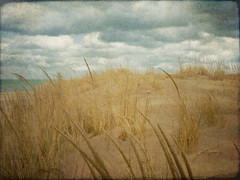 Cloudy Day (Danica (Mariella Tammas)) Tags: texture beach clouds nuvole dunes spiaggia garyin millerbeach mygearandme mygearandmepremium mygearandmebronze rememberthatmomentlevel4 rememberthatmomentlevel1 rememberthatmomentlevel2 rememberthatmomentlevel3 rememberthatmomentlevel7 rememberthatmomentlevel9 rememberthatmomentlevel5 rememberthatmomentlevel6 rememberthatmomentlevel8