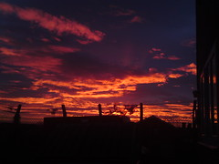 Blood Red Sky In Leeds,West Yorkshire UK (Columbiantony (England,UK)) Tags: uk red england sky cloud sun storm west clouds sunrise amazing blood yorkshire leeds tony formation unusual rise gringo formations wortley armley ls14 columbiantony columbiantonyleeds