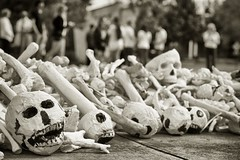 one million bones (bytegirl24) Tags: newmexico santafe protest capitol omb onemillionbones
