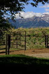 Ranch (andrewpug) Tags: ranch horse mountain color beautiful gate gorgeous