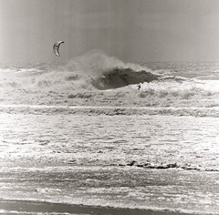 april 1st 2012 big swell series #3, i'm going to eat you…not, santa cruz, april 1st 2012 [#022506] (Jeff Merlet Photography) Tags: ocean california ca sea sky blackandwhite bw usa santacruz kite 120 film beach water published surf pacific surfer board horizon wave surfing kiteboarding hasselblad 200 surfboard hp5 kiteboard 06 ilford 2012 negatif shorebreak bigwave 500cm hp5plus sonnar carlzeiss hassy kiteboarder 250mm 022506 sonnar250 cautionkites thelanetowaddell jeffmerletphotography jeffmerlet photojeffmerletcom carlzeiss250mmf56sonnar cautionkitescom gammasanfrancisco gamma0347 r0225 20120401