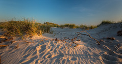 Evening in the Dunes (Clickpix) Tags: travel summer sun lighthouse water denmark sand reisen meer wasser sommer urlaub dune insel sonne dnemark leuchtturm dne abendstimmung
