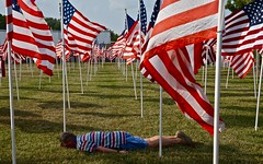 Face Down in a Field of Flags (ricko) Tags: usa flags kansas 4thofjuly merriam fdt imayankeedoodledandy facedowntuesday