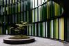 Kleingartenanlage (Nitekite) Tags: canon cologne köln architektur grün büro baum nitekite schönhauserstrase kölnbayenthal ovaloffices
