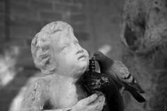 """eroso dal tempo (""""pipopipo"""") Tags: blackandwhite bw italy canon italia monumento sicily palermo statua sicilia biancoenero sud siciliano canoniani maluchiffaritime flickrsicilia"""