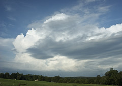 Storm Brewing (K. W. Sanders) Tags: trees sky storm nature clouds 123nature