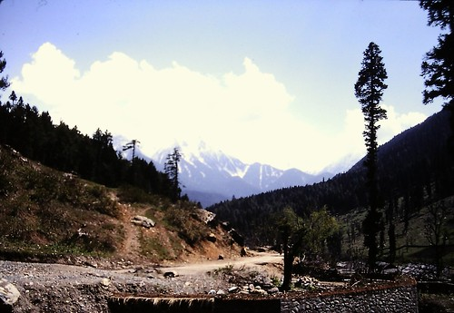 Road between Aru and Pahalgam Kashmir