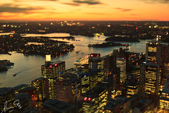 Sydney city and Harbour from the Sydney Tower Eye