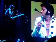 Elvis Presley - Le Concert - Znith, Paris (2010) (kekelmb) Tags: elvispresley leconcert znith paris 2010 concert
