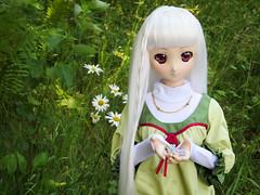 Daphne with Flowers (*mandygirl*) Tags: dollfiedream dd dollfiedreamsister dds ddh06 animedoll
