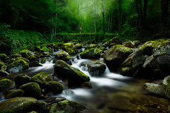 Heatwave (PierrePelli) Tags: heatwave green mom momy river rock forest soft beautiful 6d canon 1740 long exposure pink trees suc et sentenac pyrenees france mountain summer
