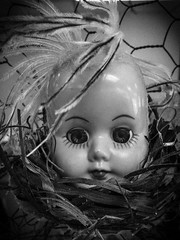 Twisted Dolls (arckphoto) Tags: dolls iphone6s prisma northbridge massachusetts unitedstates us weird unusual twisted