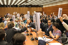UN working group on nuclear disarmament