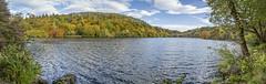 4702- Aros Park Lochan (martinjonesmull) Tags: mull landscape wildlife aros park lochan