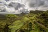 The Lone Tree (Fading Dusk Photography) Tags: scotland kyoshimasamune isleofskye westscotland skye innerhebrides highlands wideangle ultrawideangle quiraing cleat lonetree zomei nd8 cokinfilters cokinnd8 longexposure landscape clouds cloudscape biodabuidhe trotternish trotternishpeninsula skyrim nd1000 uk zomeind1000