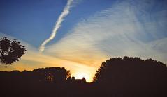 Good morning - Day 71 (wiedenmann.markus) Tags: sun sunrise weather cloud cloudporn shadow shade tree urba nature denhaag trail brnach nikon nikon610