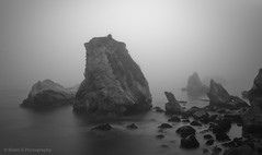 Dinosaur Rocks (Silent G Photography) Tags: california ca longexposure blackandwhite bw water monochrome fog landscape mono rocks pacific boulders motionblur le pismo pismobeach 2012 reallyrightstuff rrs 10stopndfilter bwnd110 margododd bh55lr nikond7000 dinosaurrocks nikkor1635mmf4 markgvazdinskas silentgphotography reallyrightstuffllc tvc33
